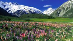 Muhteşem Bir İlkbahar Tatili İçin 7 Öneri
