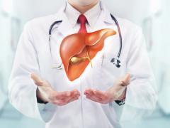 Karaciğer Sağlığınızı Korumanın Yolları