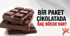 Bir Paket Çikolatada Kaç Böcek Var?