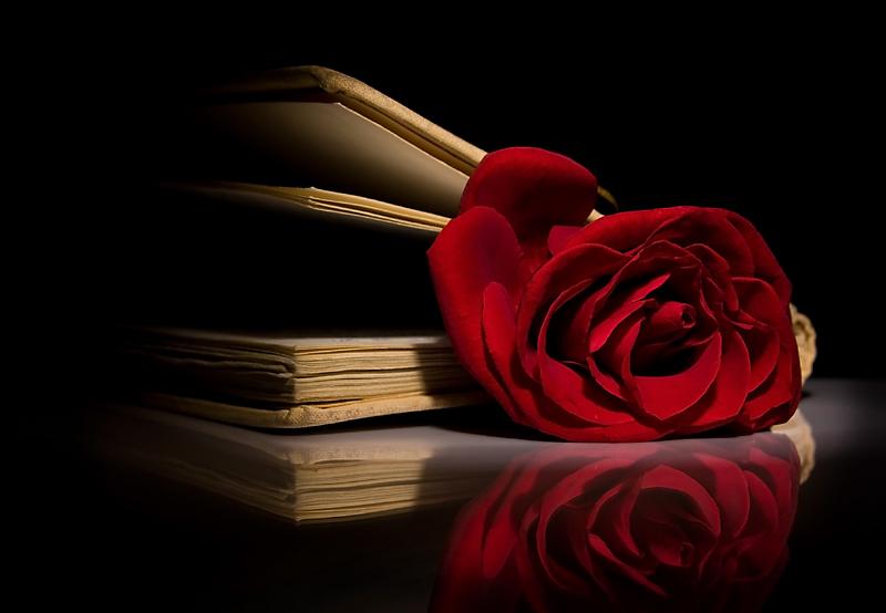Şiir ve Edebiyat